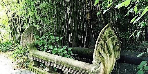 Exposition coloniale et permaculture au jardin d'agronomie tropicale