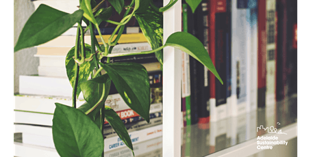 SOLD OUT - Caring for Indoor Plants: Workshop with Steven Hoepfner tickets