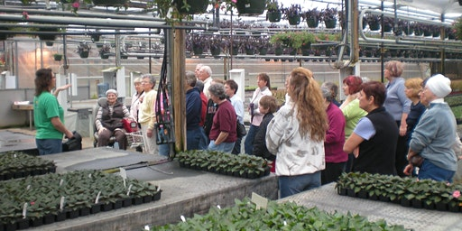 Wenke Greenhouses Production Tour @10am