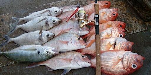 MTA Kaimai: Bay of Plenty Fishing Trip, 2020