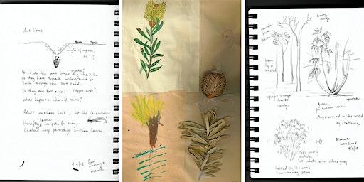 Nature Journalling - school holiday workshop