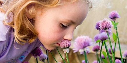 Children's Herbal Workshop