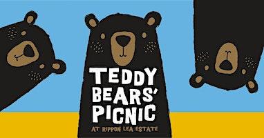 Teddy Bears' Picnic 2020