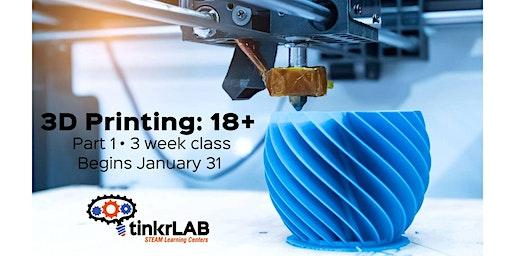 ADULT: 3D Printing Design: 3 Week Class
