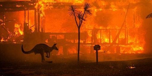 MPSC: TRIVIA FOR A CAUSE - Bushfire Relief