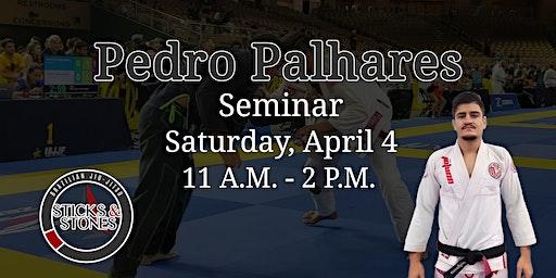 Pedro Palhares BJJ Seminar