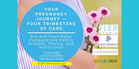 Your Pregnancy Journey — Four Trimesters of Care tickets