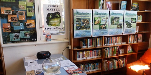Creating a Frog friendly garden @Deloraine Library