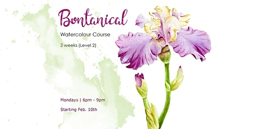 Botanical Watercolour Course (Level 2) -  3-Weeks