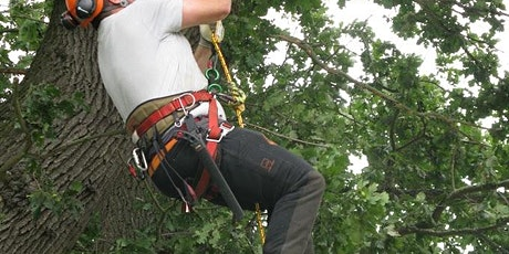 NPTC 0020-07 Rope & Harness & NPTC 0020-13 Tree Climbing & Rescue (CS38) tickets