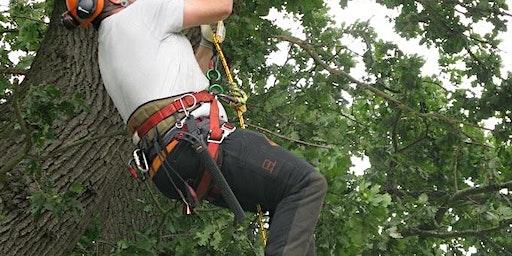 NPTC 0020-07 Rope & Harness & NPTC 0020-13 Tree Climbing & Rescue (CS38)