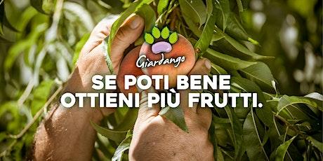 Incontro sulle potature degli alberi da frutto. biglietti