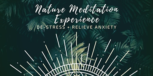 Nature Meditation Experience | De-stress and relieve anxiety