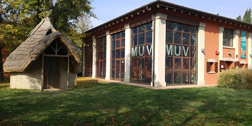 Visita al MUV - Museo della civiltà Villanoviana - 2€ - Card Cultura