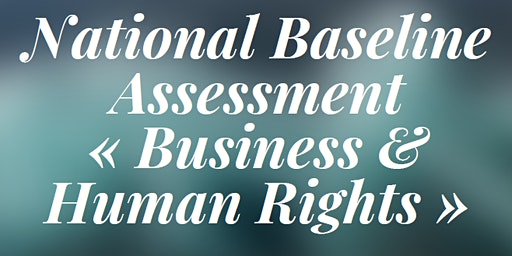 """National Baseline Assessment """"Business & Human Rights"""""""
