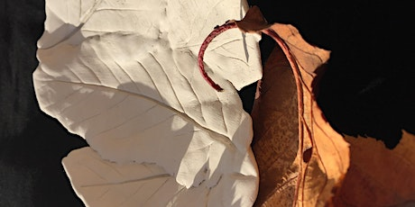 Botanical ceramics exploring patterns in nature with Melissa Tilley tickets
