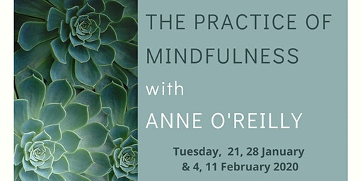 The Practice of Mindfulness - with Anne F O'Reilly