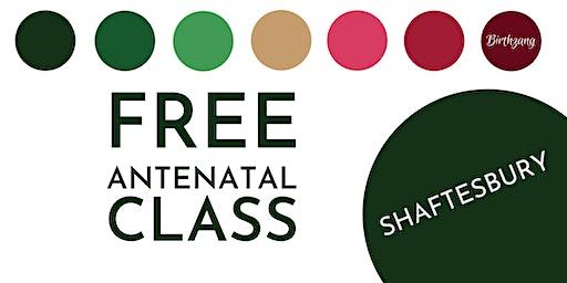 FREE Antenatal Class (Shaftesbury)