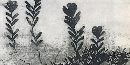 Wetlanders: The Overwintering Project Moreton Bay (Floor Talk & Morning Tea)