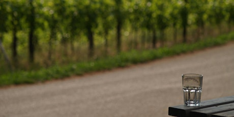 Vino di Cooperà - Degustazione vini Brda e Collio biglietti