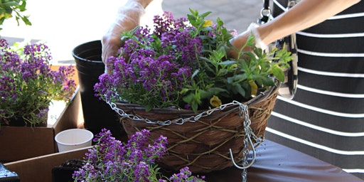 Mother's Day Hanging Basket Class