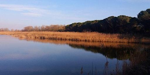 Vallevecchia, un angolo di laguna tra la terra e il cielo