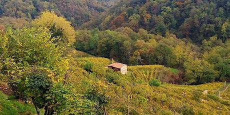 Le dolci colline di Premaor tra Casoni e Antichi Mestieri biglietti