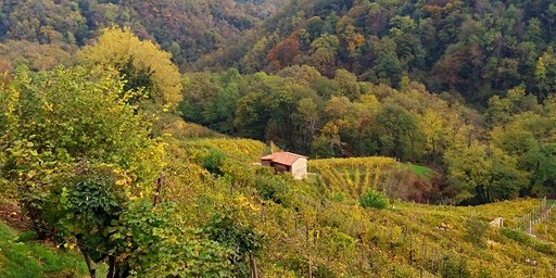 Le dolci colline di Premaor tra Casoni e Antichi Mestieri