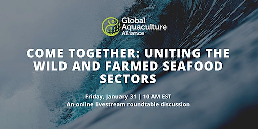 Come Together: Uniting the Wild and Farmed Seafood Sectors