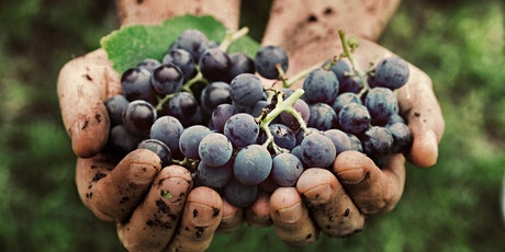 Organic, Natural & Biodynamic Wines tickets