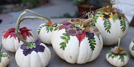Pumpkin Palooza - USU Garden Member Exclusive Class tickets