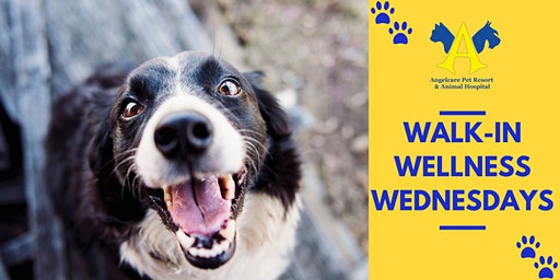 Walk-In Wellness Wednesday!