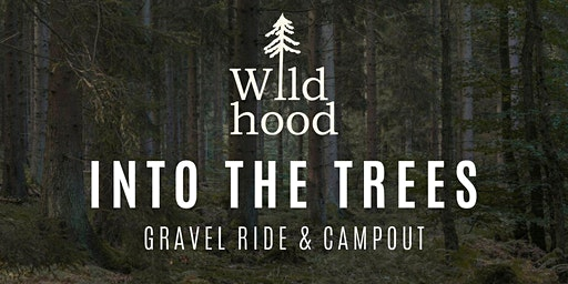 Into The  Trees -  Gravel Campout