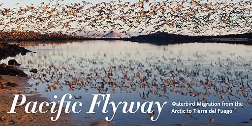 Pacific Flyway