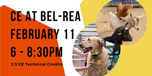 Bel-Rea CE: Dog Behavior and City Goats Part I
