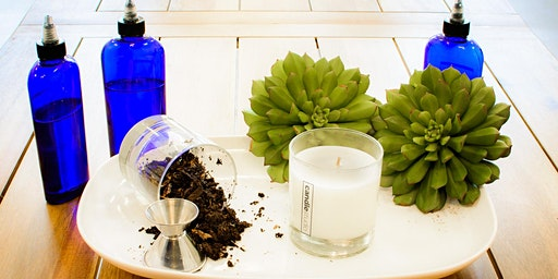 Scents & Succulents at The Candle Studio