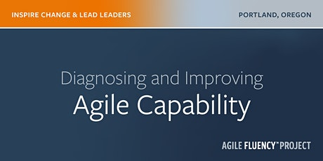 Diagnosing and Improving Agile Capability tickets