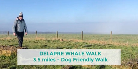 DELAPRE ABBEY WHALE WALK | 3.5 MILES | EASY | NORTHANTS tickets