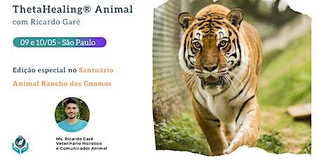 Formação Oficial ThetaHealing Animal no Santuário Animal Rancho dos Gnomos - SP - 09 e 10 de maio ingressos