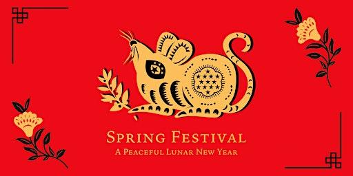 Spring Festival: Lunar New Year Celebration