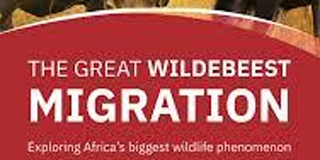 EMERGING AFRICA AND MIGRATION bilhetes