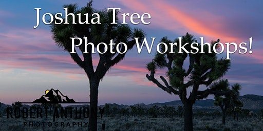 4 Day Joshua Tree Photography for Beginners Class~Companion Discount!