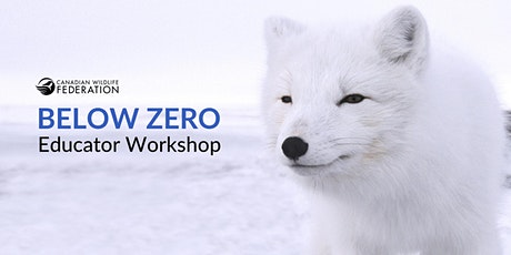 Below Zero Workshop tickets