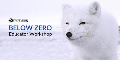 Below Zero Workshop tickets