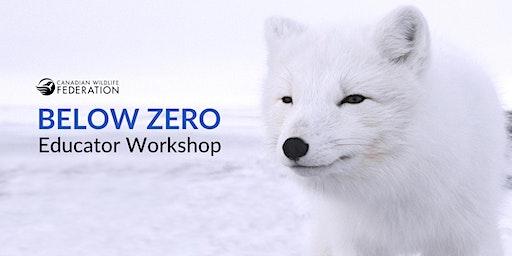 Below Zero Workshop