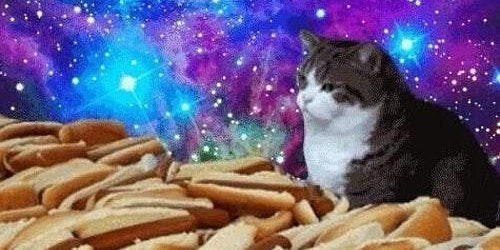Life, The Universe, and Hot Dogs