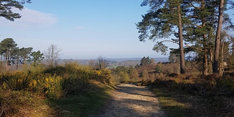RUAlive Trail Run - Blackdown, South Downs NP tickets