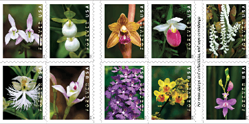 USPS National Wild Orchids Stamp Dedication Feb 21 in Coral Gables