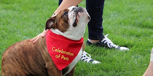 Celebration of Pets 2020 - Vendor Registration