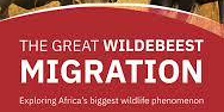 MIGRATION AND THE FUTURE OF AFRICA bilhetes
